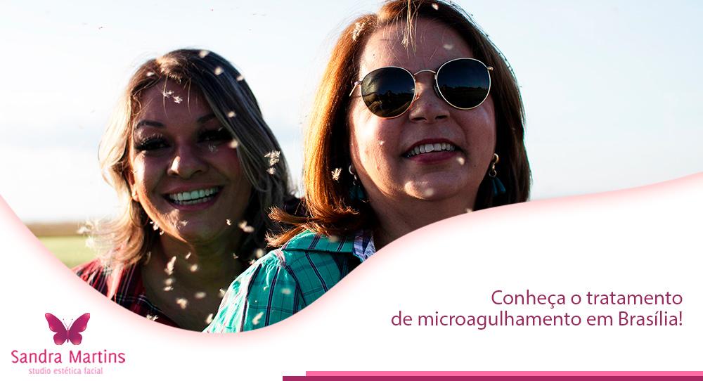 Você está procurando onde fazer um tratamento completo de microagulhamento ou a indução percutânea de colágeno (IPCA) com o uso de um dermaroller em Brasília? Conheça a tradição do Studio Sandra Martins